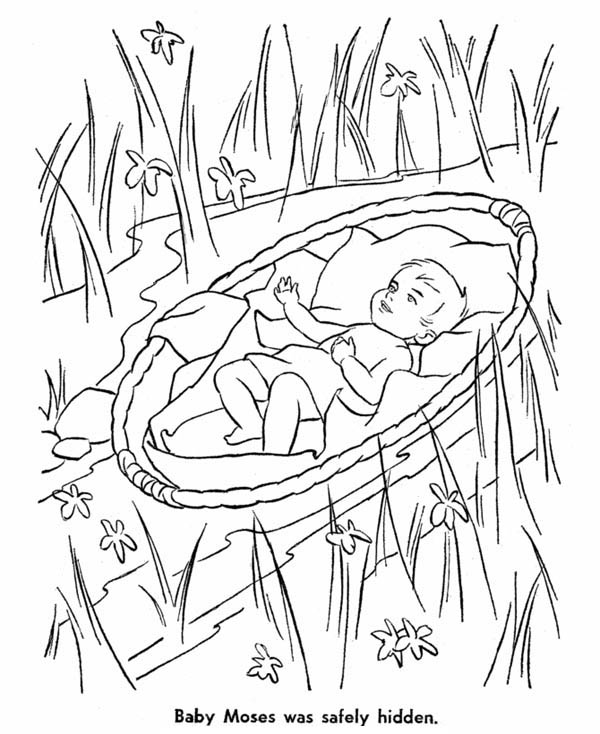 moses baby moses safely hidden from pharaoh army coloring page baby moses safely hidden
