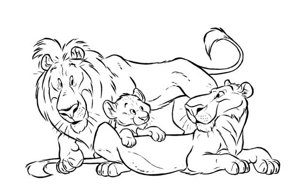 Lion And His Group Coloring Page