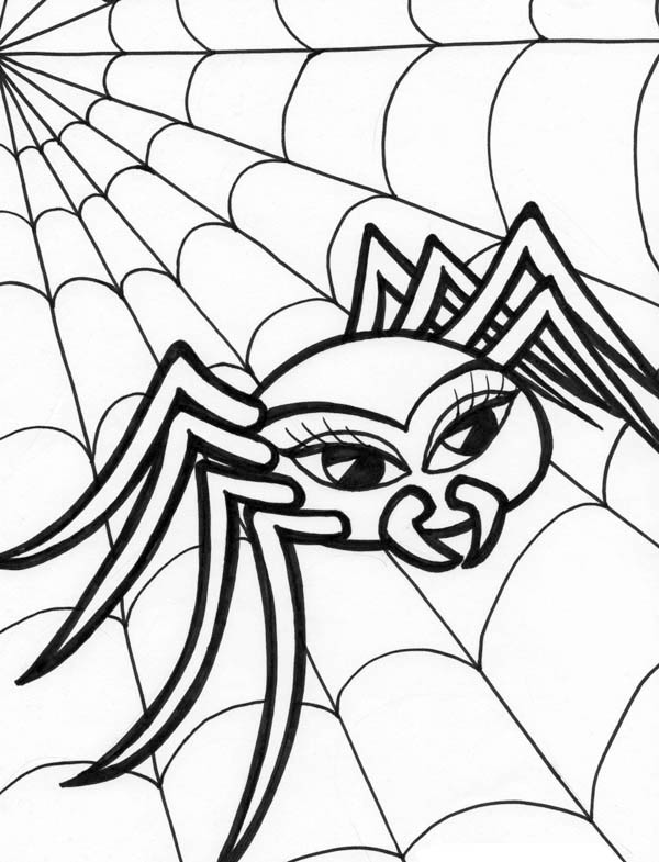 Beautiful Spider Walking on Spider Web Coloring Page Beautiful
