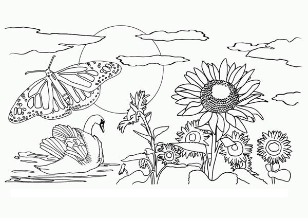 Beautiful View of Nature Coloring Page: Beautiful View of Nature ...
