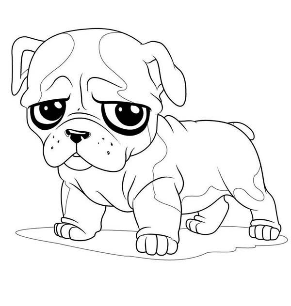 Little Pug Sad Face Coloring Page