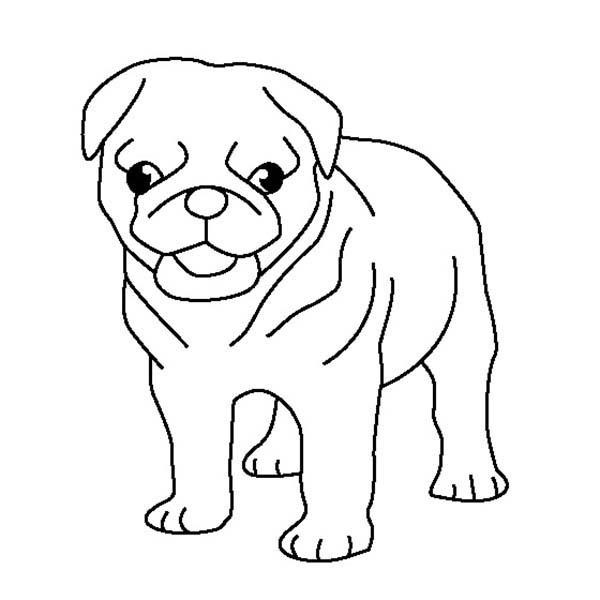 Pug Puppy Coloring Page Pug Puppy Coloring Page Color Luna