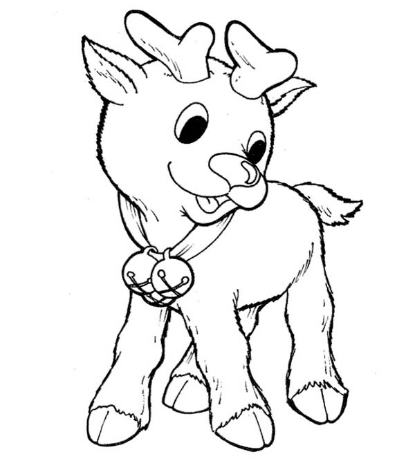 Little Rudolph the Red Nosed Reindeer Coloring Page Little Rudolph