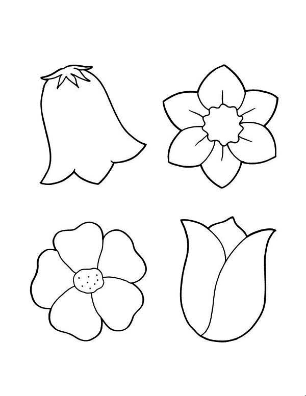 Spring Flowers Coloring Pages Coloring Book of Coloring Page