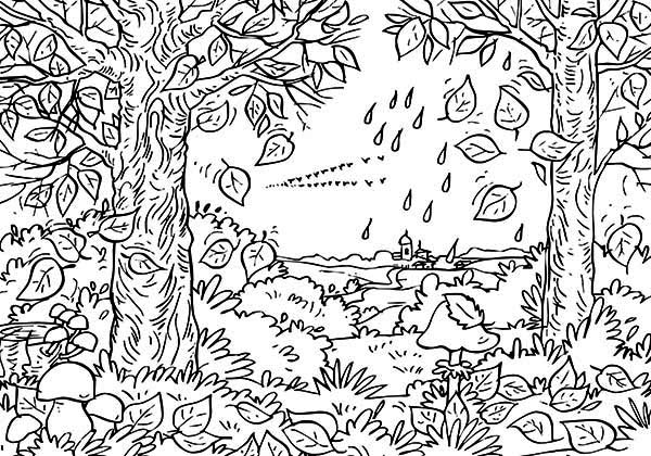 Autumn Fall Leaf in the Forest Coloring Page | Color Luna