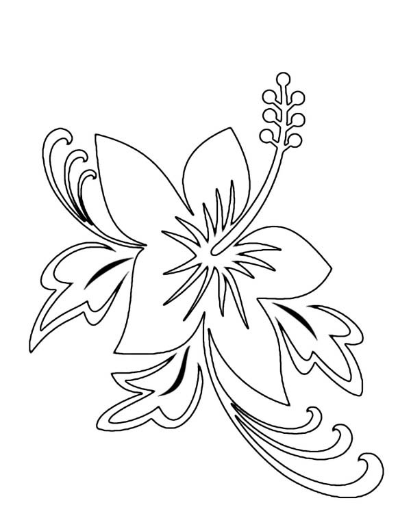 Beautiful Hawaii State Flower Hibiscus Flower Coloring Page