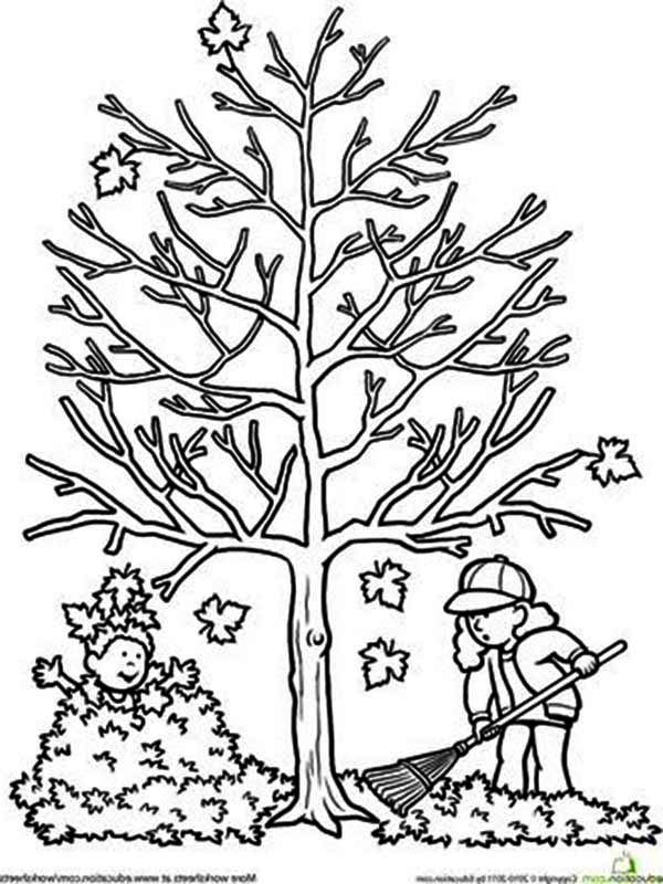 Fall Leaf, : Clean Up Autumn Fall Leaf Coloring Page