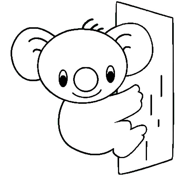 Cute Koala Bear Coloring Page Color Luna