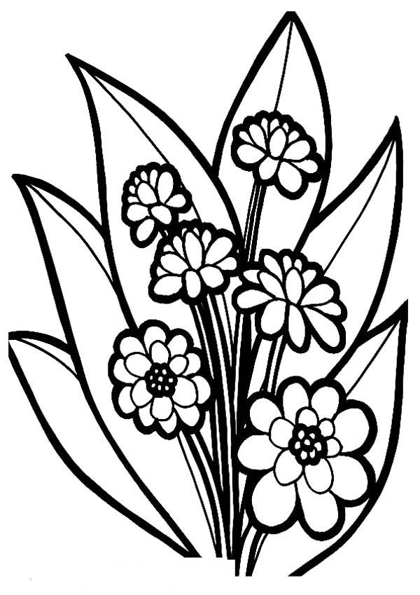 Flower Bouquet, : Fancy Flower Bouquet Coloring Page