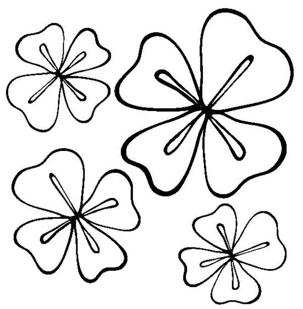 Four Leaf Clover For A Good Luck Coloring Page