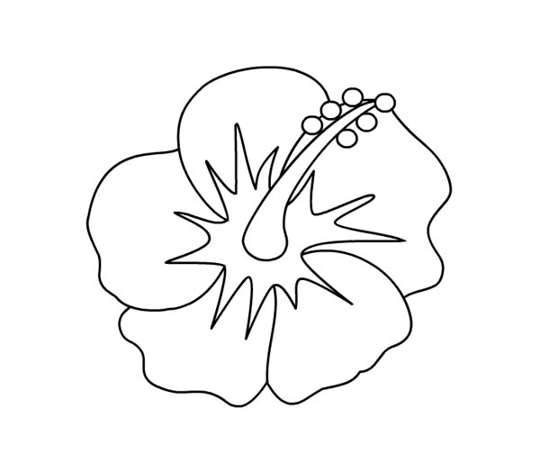 Hibiscus Flower Picture Coloring Page