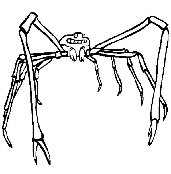 japanese spider crab coloring page
