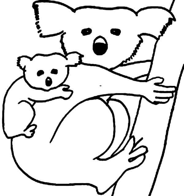 Koala Bear Carrying Her Baby Coloring Page