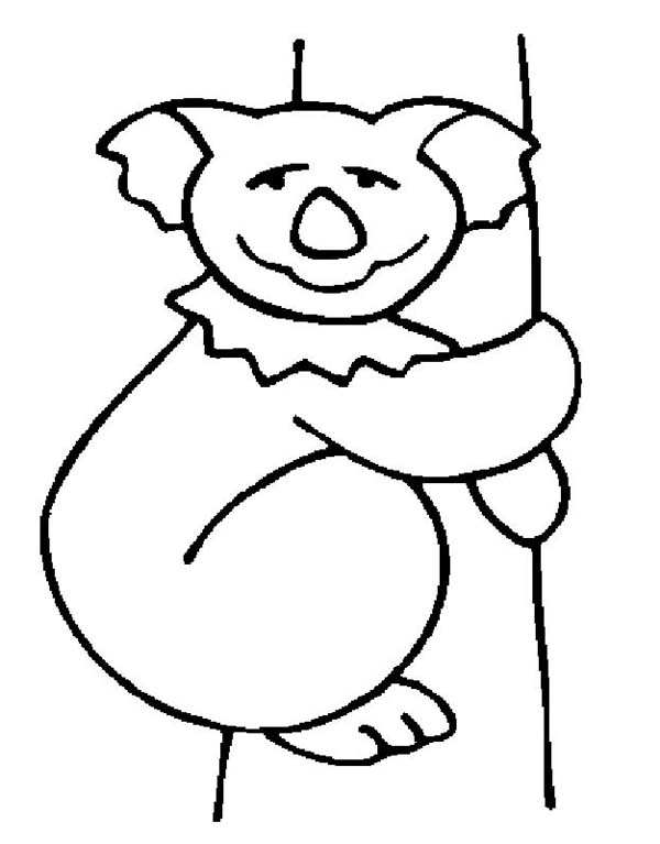 Koala Bear, : Koala Bear Drawing Coloring Page