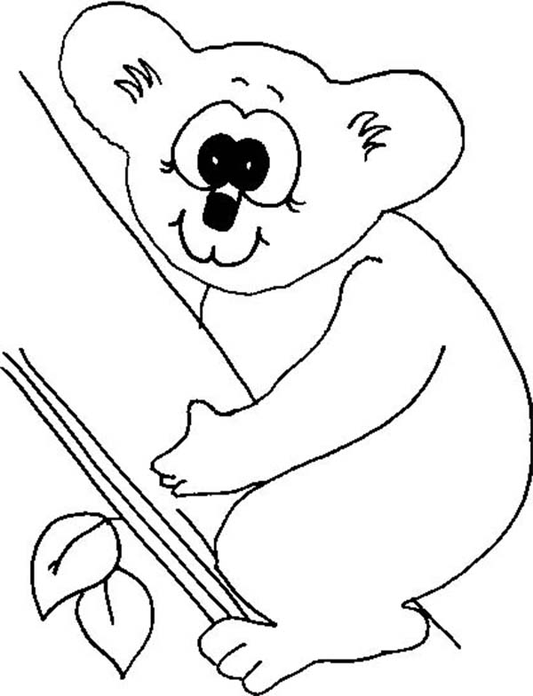 Koala Bear, : Koala Bear with Big Eye Coloring Page