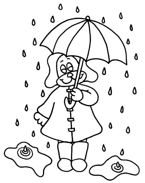 Little Puppy Under Raindrop With Umbrella Coloring Page