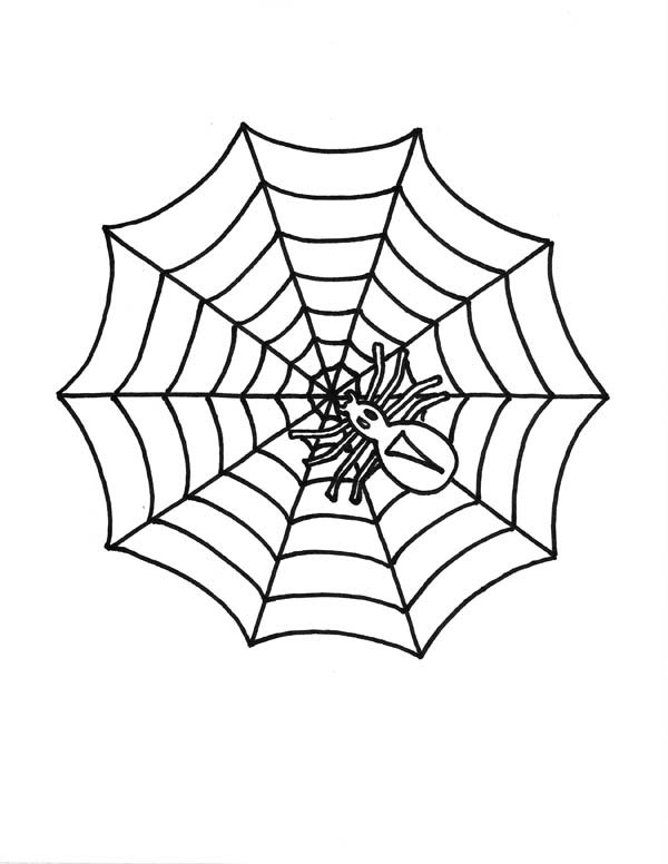 Little spider on spider web coloring page