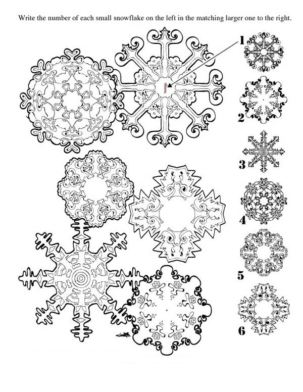 Snowflakes, : Match Matching Snowflakes Coloring Page