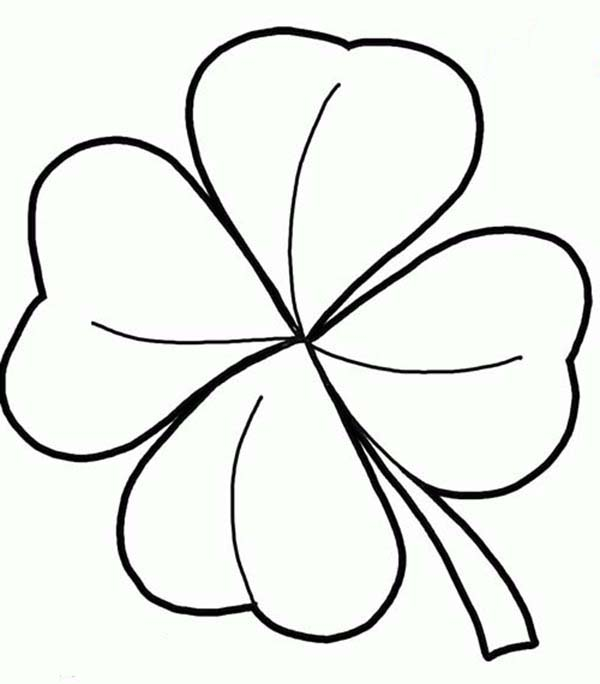 Four-Leaf Clover, : Realistic Drawing of Four-Leaf Clover Coloring Page