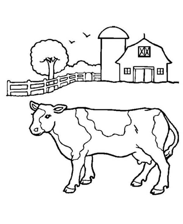 Barn, : Barn and a Milk Cow Coloring Page