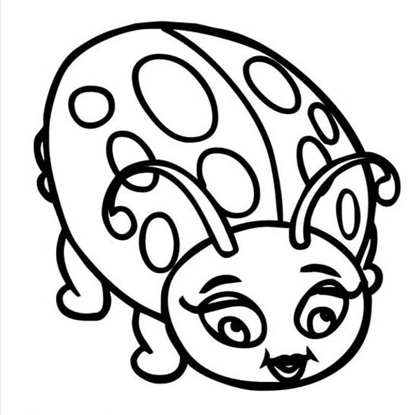Lady Bug, : Beautiful Lady Bug Coloring Page