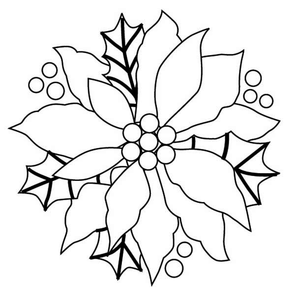 pointsettas coloring pages - photo#29