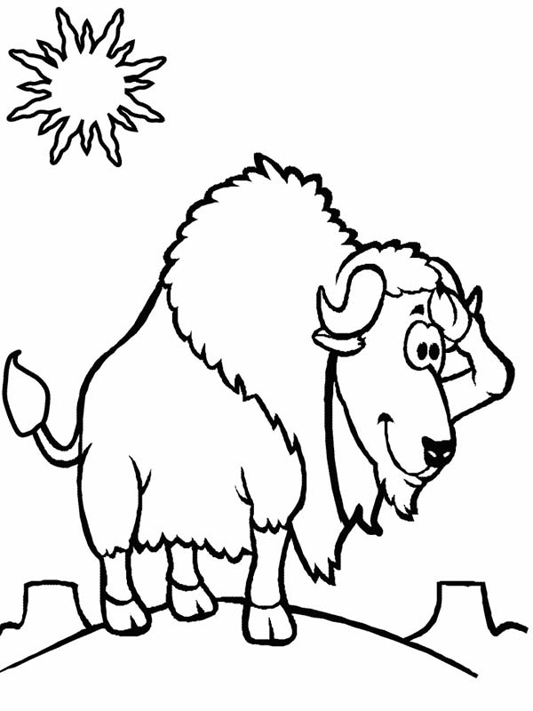 Bison, : Bison Standing at Noon Coloring Page