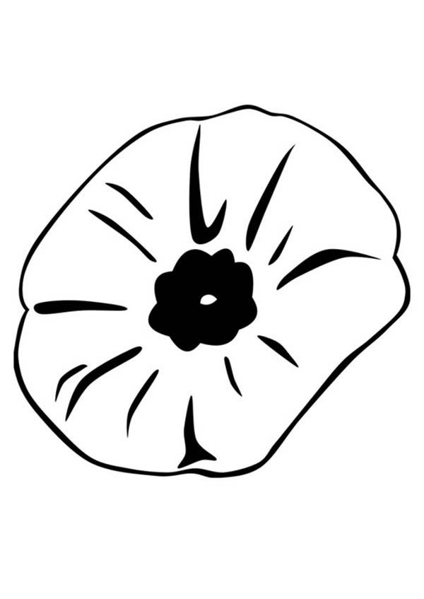 Poppy, : Close Up Picture of Poppy Coloring Page