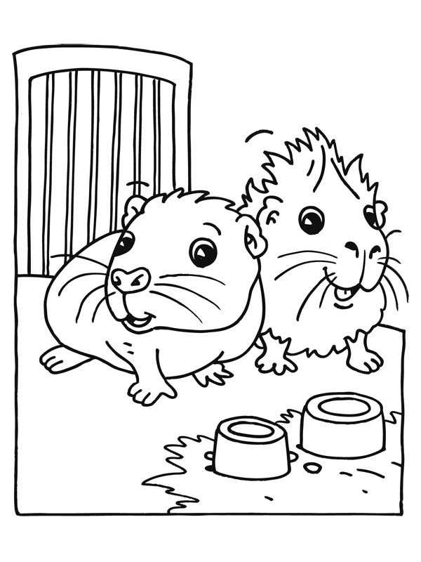 Coloring pages of a guinea pig ~ Cute Baby Guinea Pig Coloring Page | Color Luna