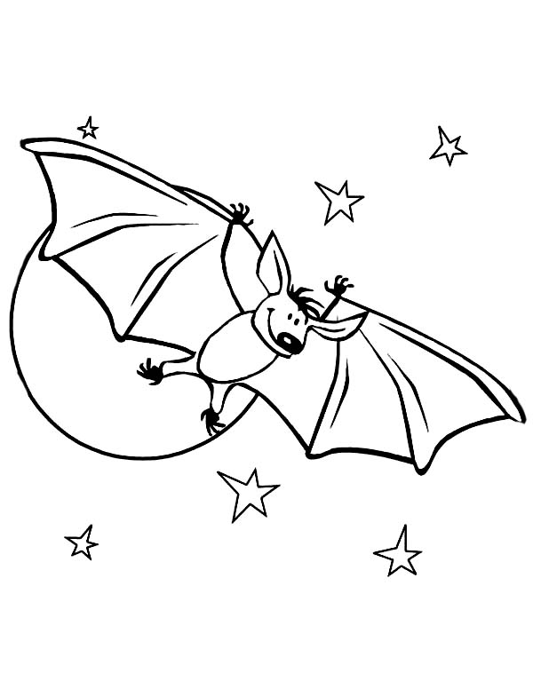 Cute Bats in Starry Night Coloring