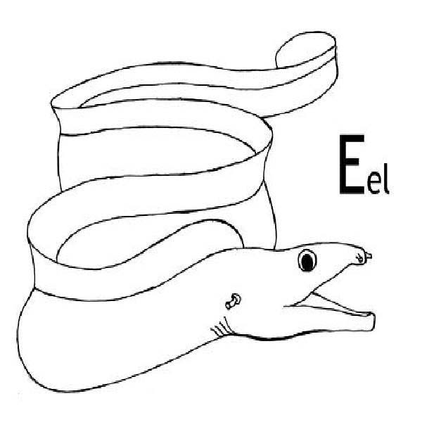 Eel, : E is for Eel Coloring Page