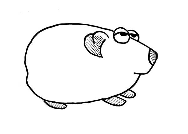 Fat Guinea Pig Coloring Page Fat