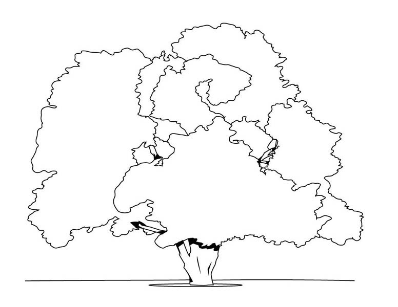 coloring pages of oak trees   Giant Oak Tree Coloring Page: Giant Oak Tree Coloring Page ...