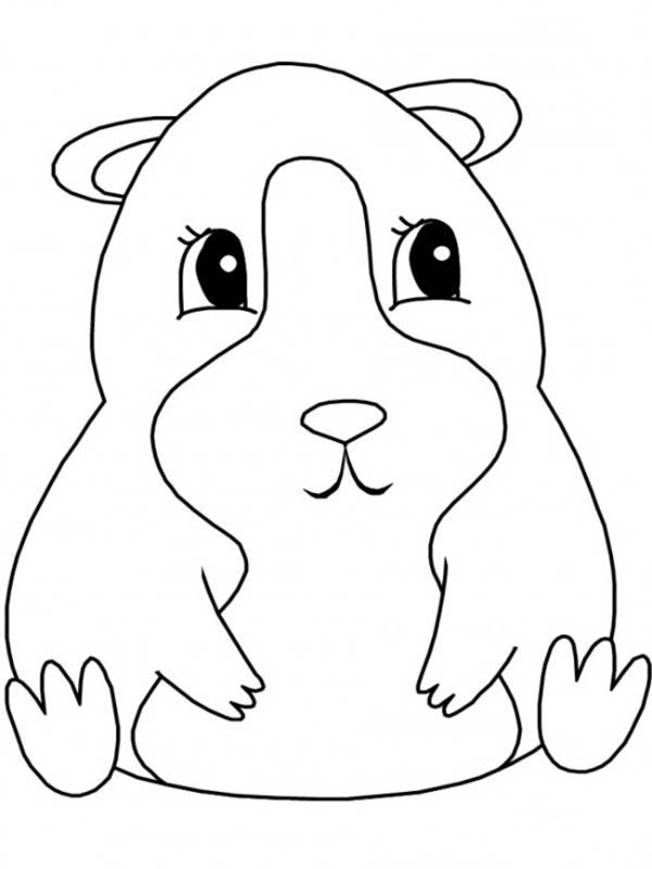 Guinea Pig, : Guinea Pig Sitting Coloring Page