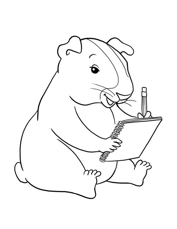 Guinea Pig, : Guinea Pig Writing Coloring Page