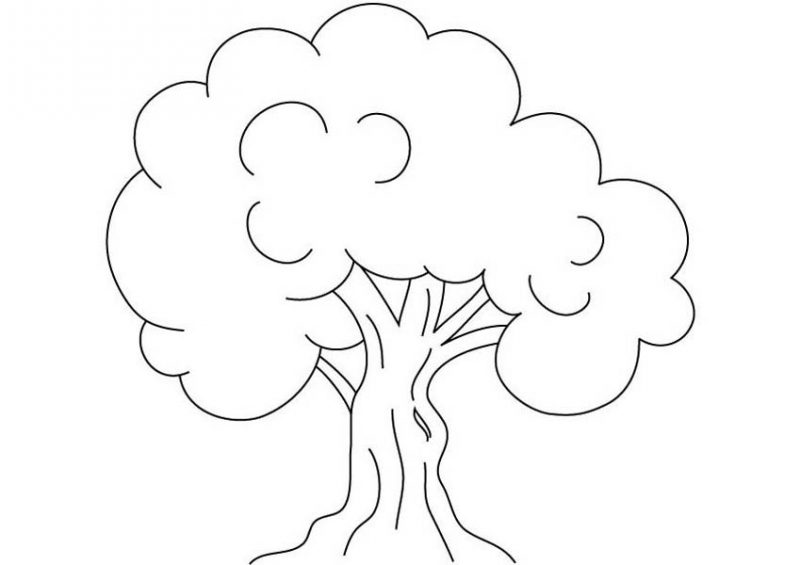 Kids Drawing of an Oak Tree Coloring Page: Kids Drawing of an Oak ...