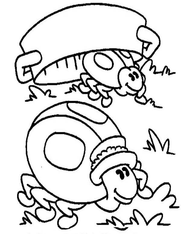 Lady Bug Hiding from Predator Coloring Page Color Luna