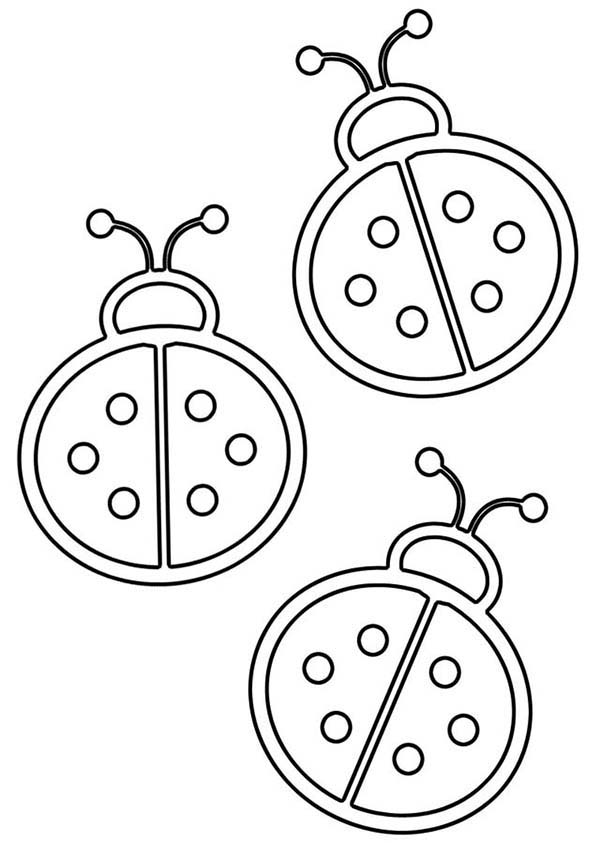 Lady Bug Outline Coloring Page | Color Luna