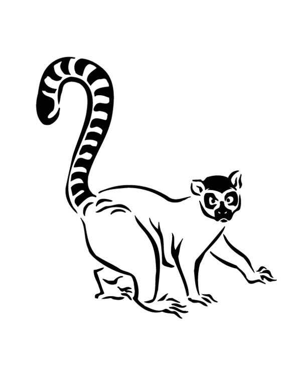 Lemur Walking Cautiously Coloring Page Color Luna