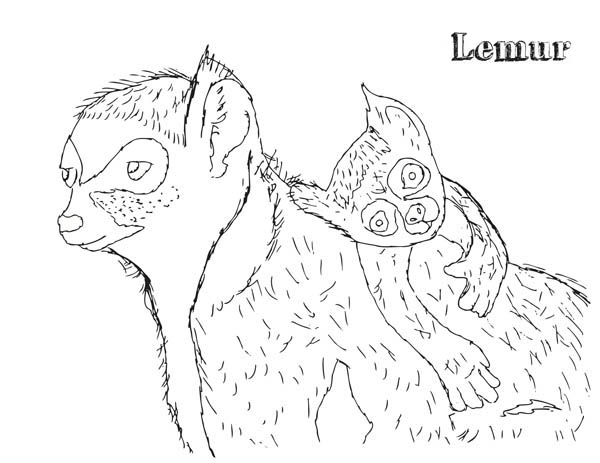 Lemur, : Lemur and Baby Lemur Coloring Page