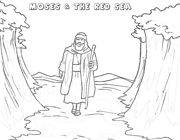Moses, : Moses Walking Through Red Sea Coloring Page