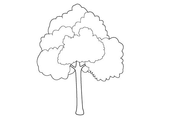 Oak Tree, : Oak Tree Outline Coloring Page