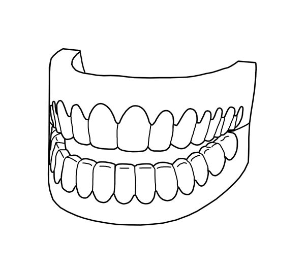 Picture of Full Teeth in Dental Health Coloring Page | Color Luna