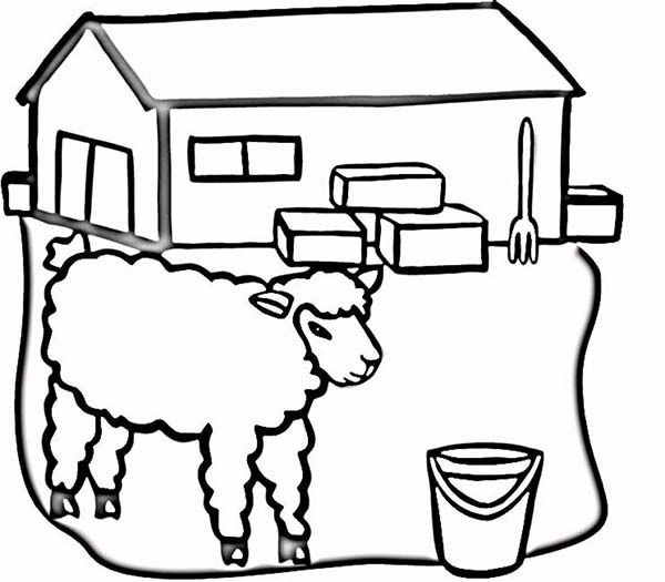 Barn, : Picture of Sheep at the Barn Coloring Page