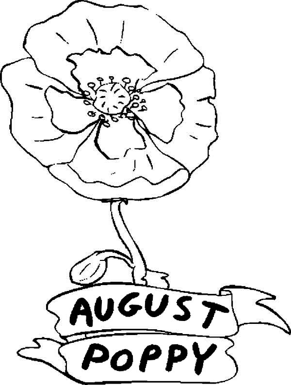 Poppy, : Poppy Flower in August Coloring Page