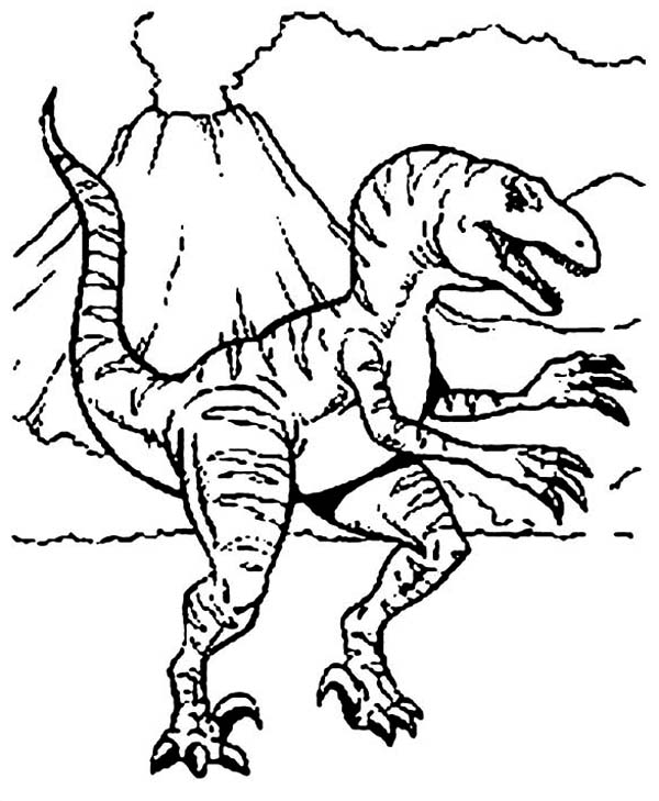 T-Rex, : Pre History Animal T Rex Coloring Page