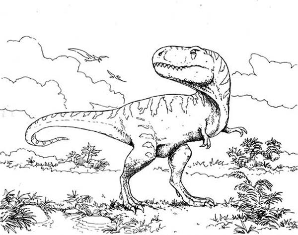 T-Rex, : T Rex Intimidating Her Enemy Coloring Page
