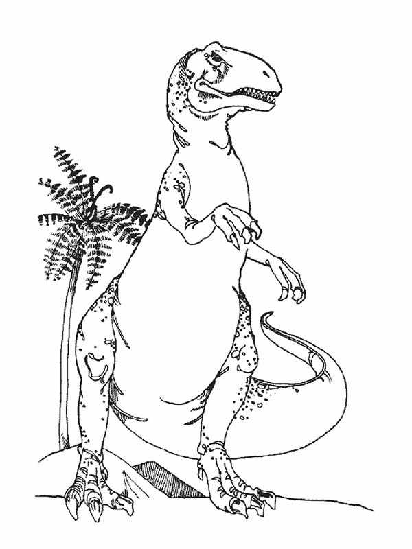 T-Rex, : T Rex Standing Taller Than Coconut Tree Coloring Page