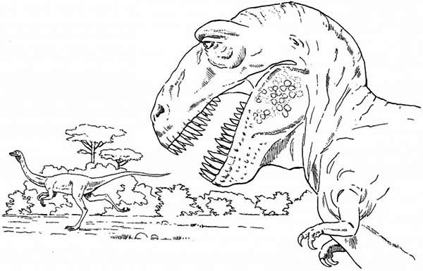 T-Rex, : T Rex is Going Hunting Coloring Page