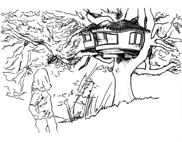 Amazing Drawing Of A Treehouse Coloring Page